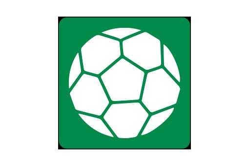 Håndbold i Silkeborg-Voel